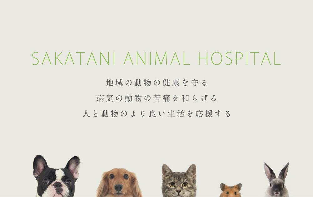 さかたに動物病院